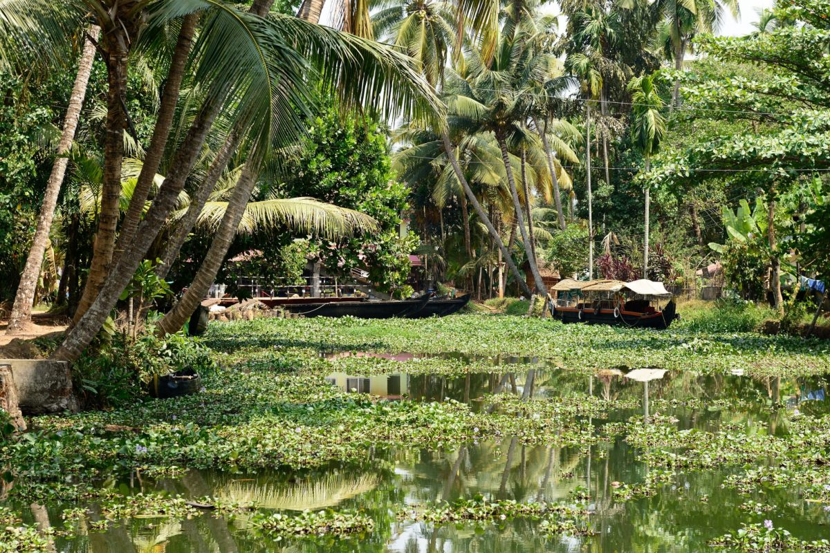 India Kumarakom2