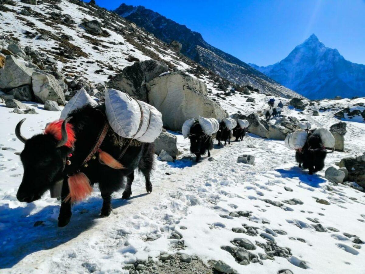 Nepal Trekking Routes 2