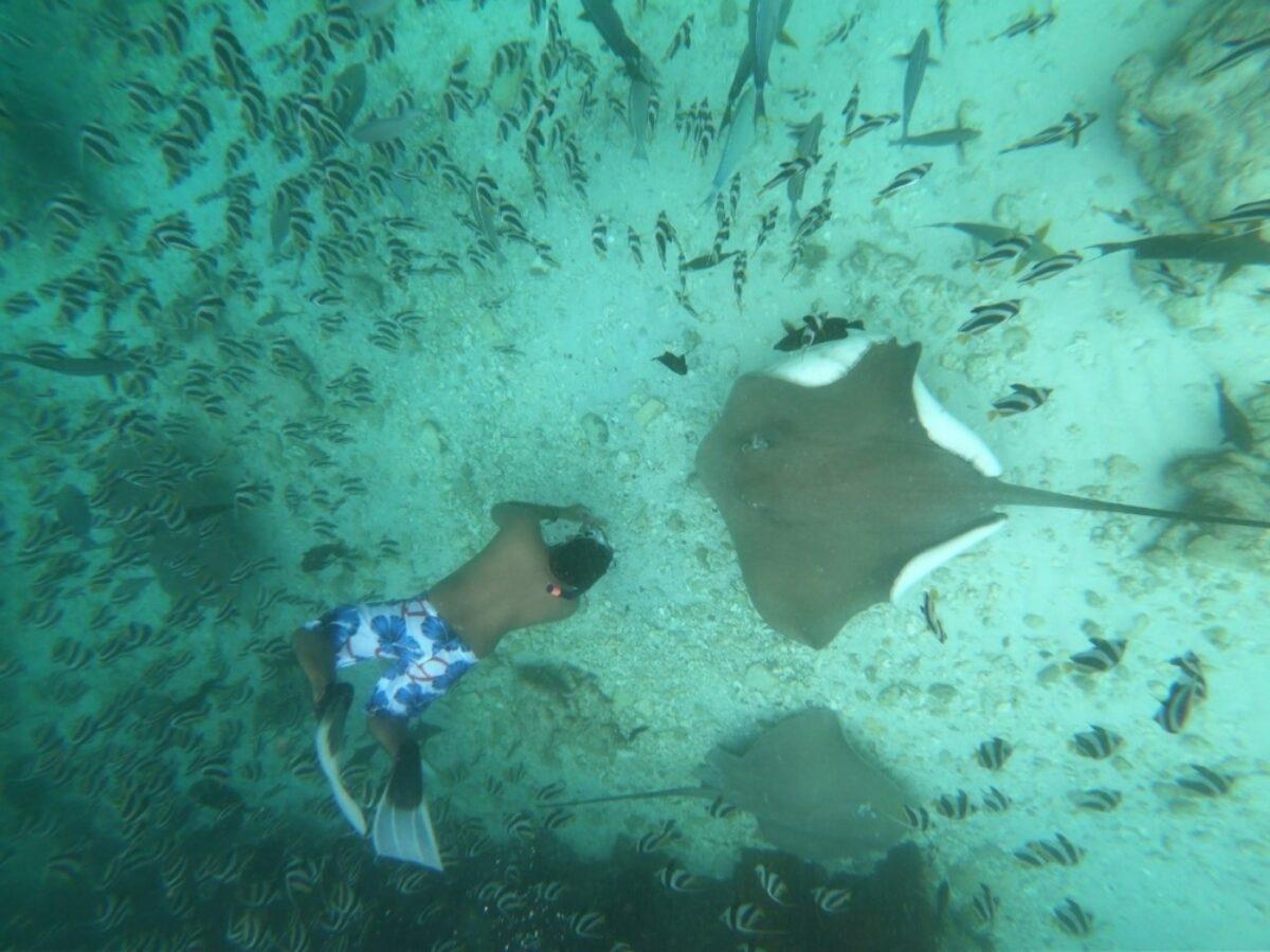 Secret Maldives 3