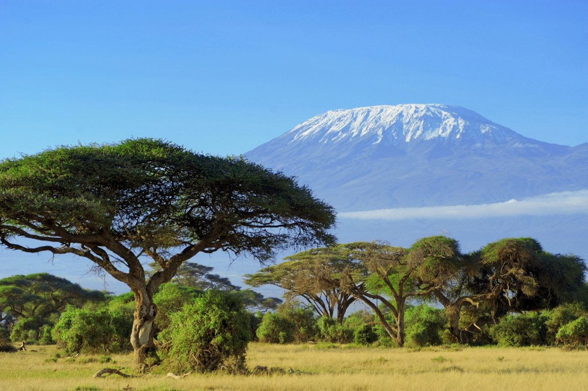 Tanzania Kilimanjaro lowres