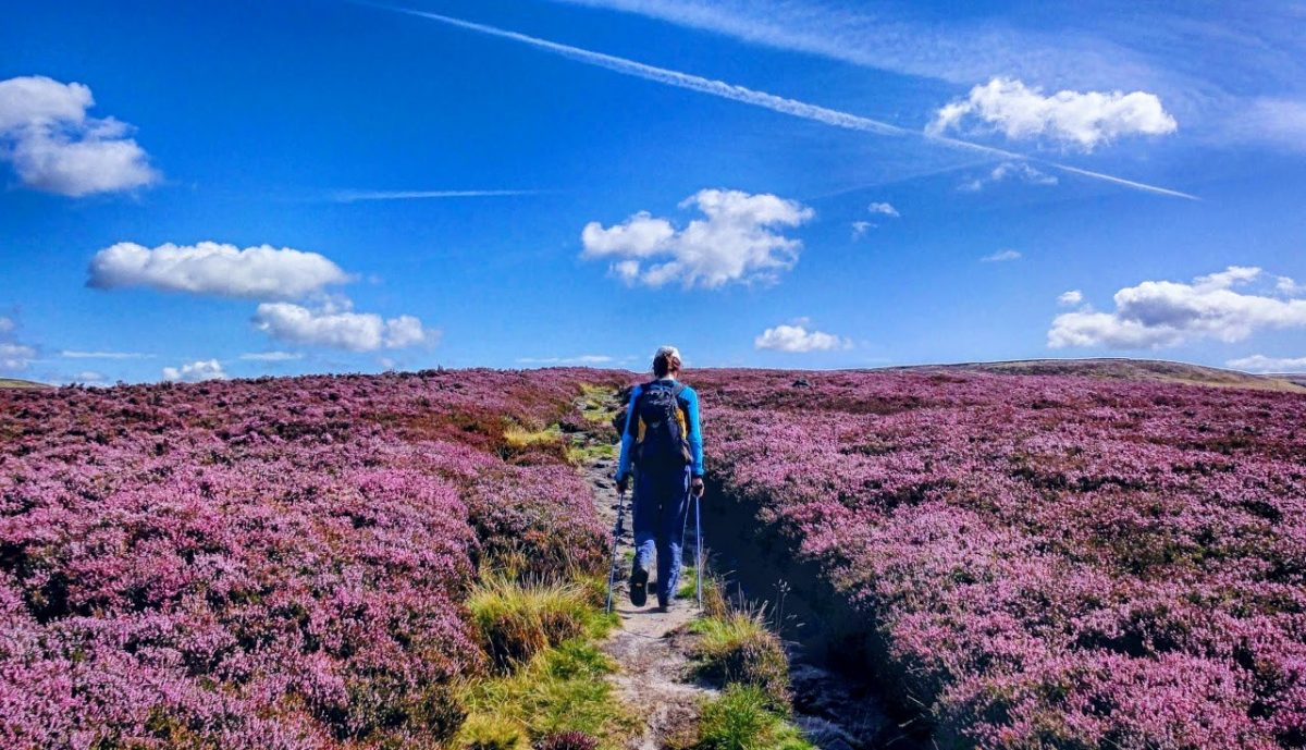 My Guided Walksstanage