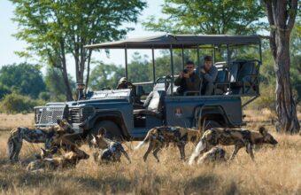 Zambia's Premier Wildlife Safari