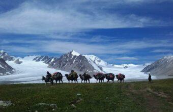 Altai Wilderness Trails