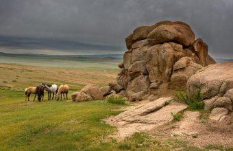 Khangai Wilderness Trails