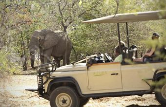Tanzania Honeymoon Adventure