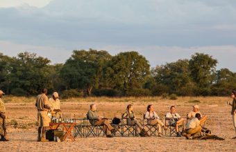Discover Luangwa & Luambe National Parks