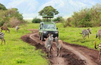 Northern Tanzania Adventure