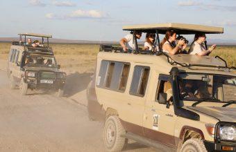 Essential Kenya Safari