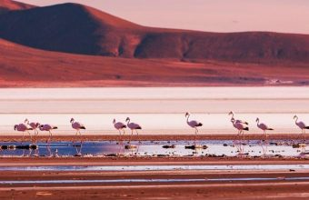 Santiago & Uyuni Salt Flats