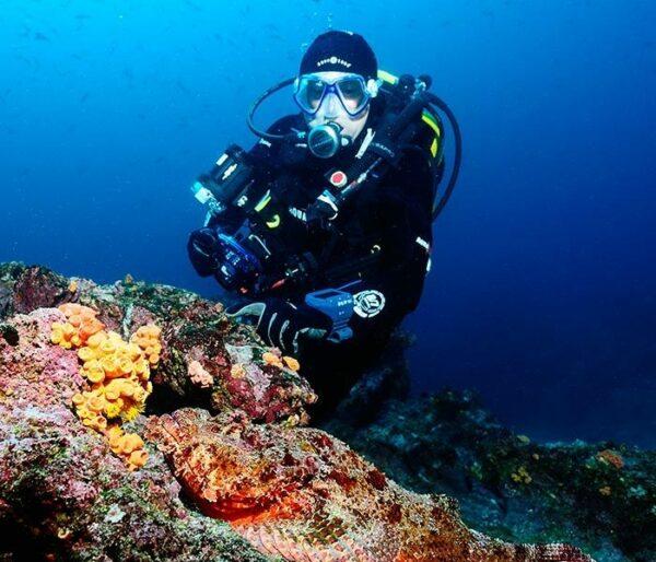Galapagos Dive Safari